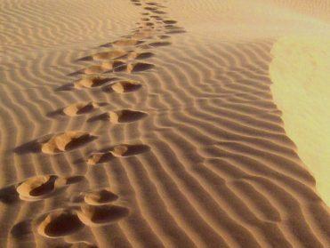 desertfootsteps